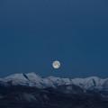 Passejant sota la lluna plena