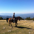 Vall de Manyanet route on horseback