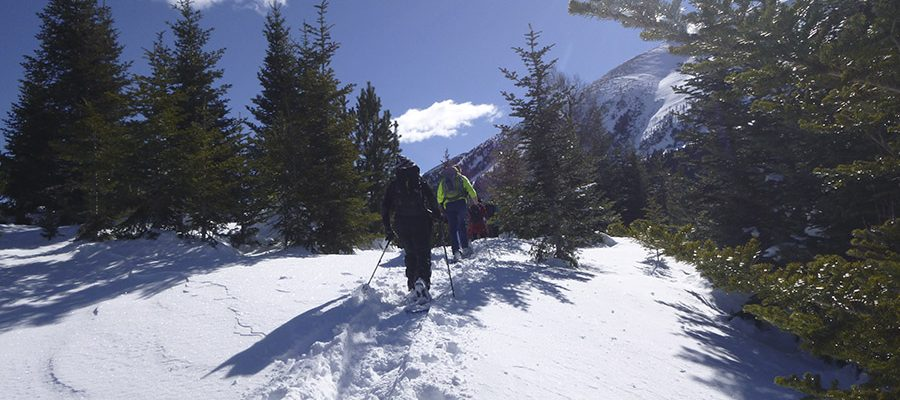 Active ecotouristic snowshoeing